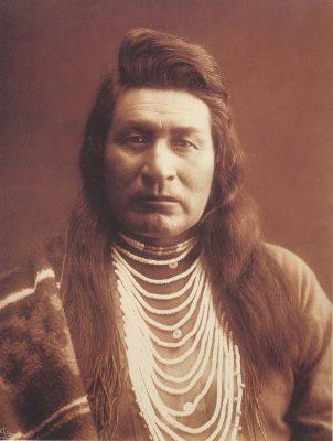 Индианците и лешниковото дърво - Purehazelwood.bg