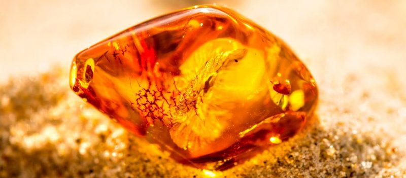 Балтийски кехлибар при зъбобол - Същност и визия на камъка